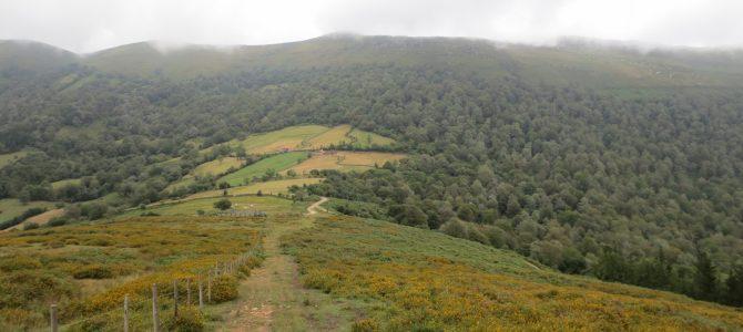Monte Aá. Gandara.