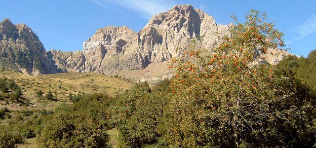 Telera (2764). Corona del Mallo (2535). Pico Pacino (1965). Pimindalluelo (1974).