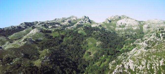 Macizo de las Enginzas (976). Cantabria.